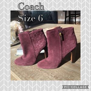 Coach wine bootie